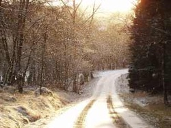 Winter Time at Kielder